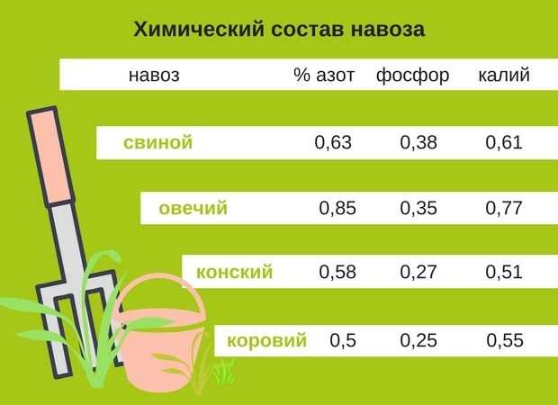 химический состав навоза
